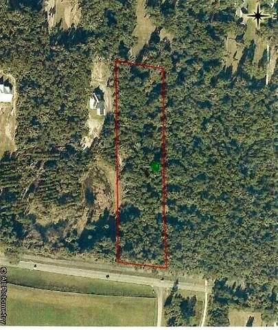 Seabiscuit Trail, Deland, FL 32720 (MLS #V4918924) :: Premier Home Experts