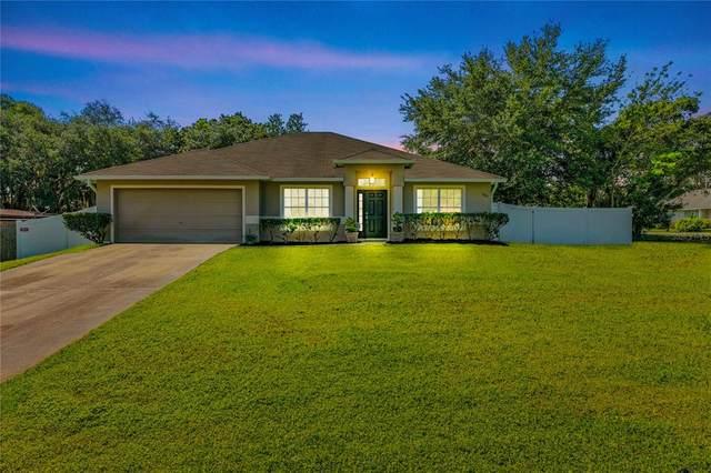 1301 Ferendina Drive, Deltona, FL 32725 (MLS #V4918935) :: Globalwide Realty