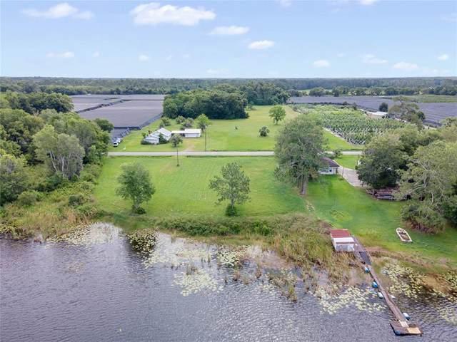 465 Emporia Road, Pierson, FL 32180 (MLS #V4918968) :: Everlane Realty