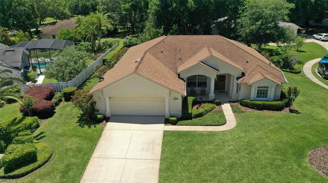 1510 Red Plum Hollow, Deland, FL 32720 (MLS #V4919002) :: The Paxton Group
