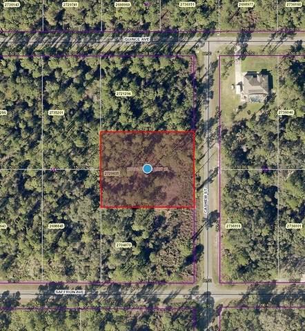 Cashew Street, Eustis, FL 32736 (MLS #V4919064) :: CENTURY 21 OneBlue