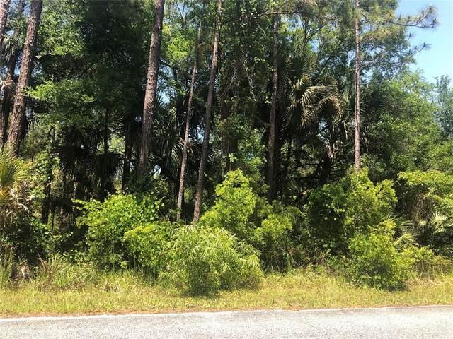 Tomahawk Trl, Deland, FL 32720 (MLS #V4919200) :: Sarasota Home Specialists