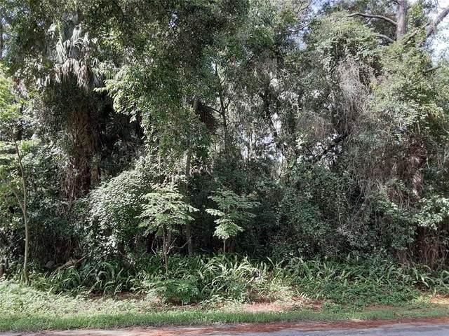 102 W Gardenia Drive, Orange City, FL 32763 (MLS #V4919308) :: Team Turner