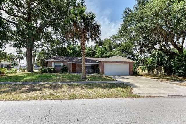 315 Slayton Avenue, South Daytona, FL 32119 (MLS #V4919510) :: Zarghami Group
