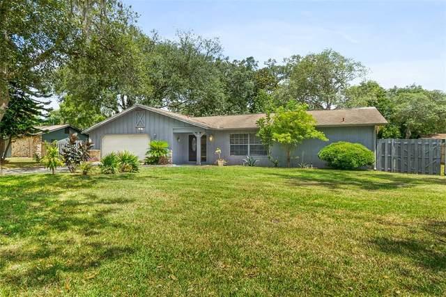 25 Whippoorwill Lane, Ormond Beach, FL 32174 (MLS #V4919575) :: BuySellLiveFlorida.com