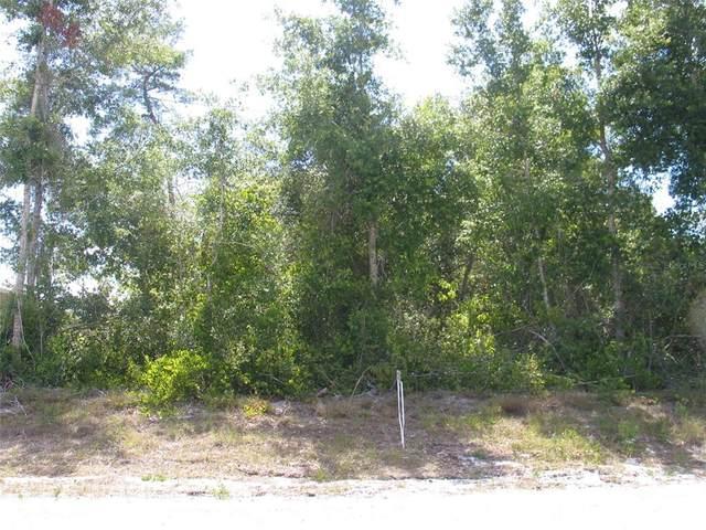TBD Chestnut Avenue, Orange City, FL 32763 (MLS #V4919594) :: Your Florida House Team