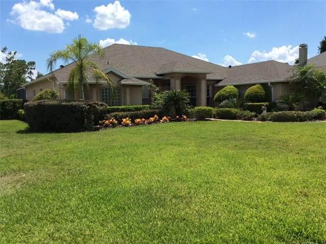 113 Alexandra Woods Drive, Debary, FL 32713 (MLS #V4919630) :: Everlane Realty