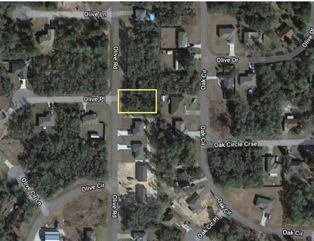 Olive Road, Ocala, FL 34472 (MLS #V4919633) :: Southern Associates Realty LLC