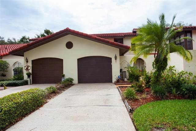 Haines City, FL 33844 :: Expert Advisors Group