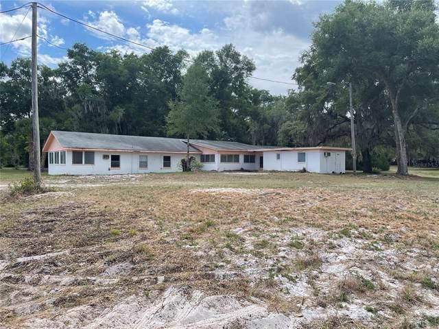 191 Lake Molly Avenue, Deland, FL 32724 (MLS #V4919636) :: Zarghami Group