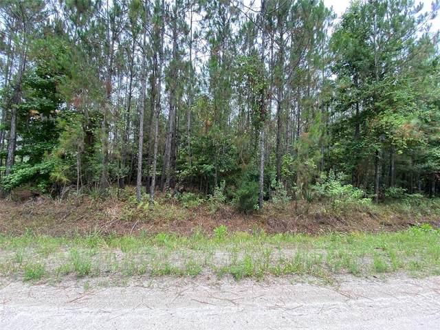 Ninemile Point Road, Pierson, FL 32180 (MLS #V4919734) :: Alpha Equity Team