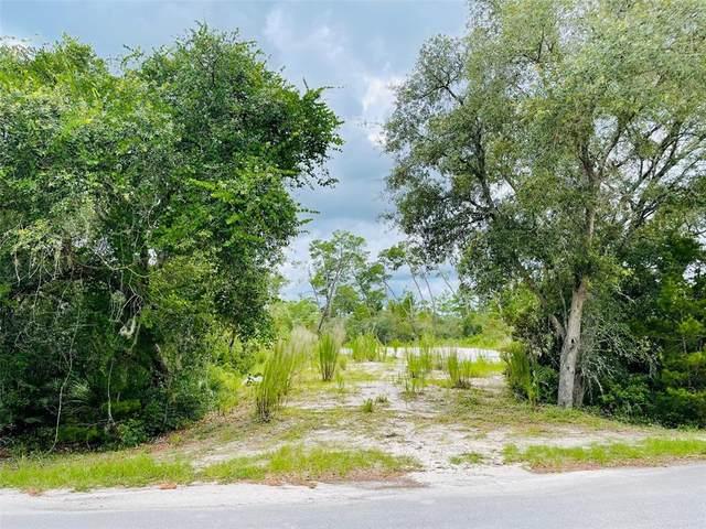 Dahlia Street, Eustis, FL 32736 (MLS #V4919737) :: Coldwell Banker Vanguard Realty