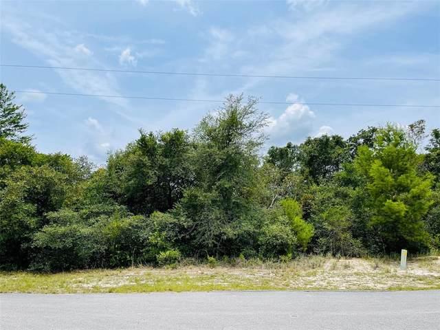 Larkspur Avenue, Eustis, FL 32736 (MLS #V4919738) :: Coldwell Banker Vanguard Realty