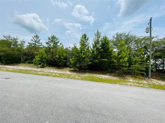 Larkspur Avenue, Eustis, FL 32736 (MLS #V4919740) :: Coldwell Banker Vanguard Realty