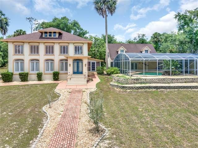 978 Marion Street, Lake Helen, FL 32744 (MLS #V4919770) :: American Premier Realty LLC