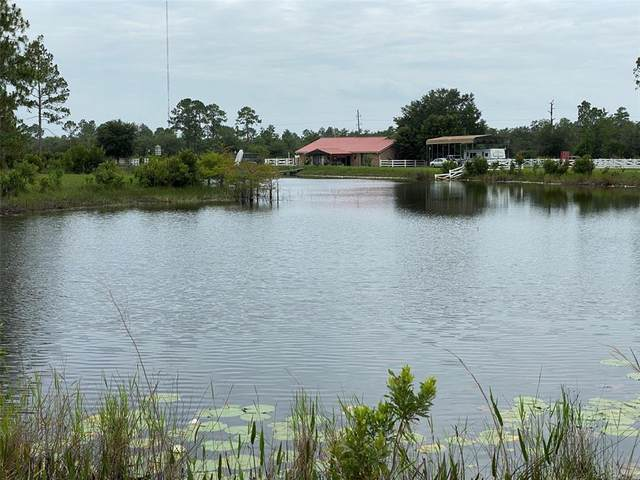29540 Fullerville Road, Deland, FL 32720 (MLS #V4919775) :: Rabell Realty Group
