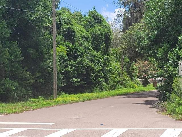 High Street, Lake Mary, FL 32746 (MLS #V4919860) :: Expert Advisors Group