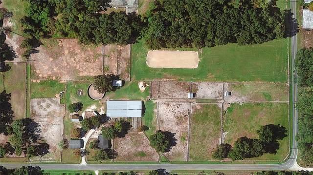 1328 Spring Garden Ranch Road, De Leon Springs, FL 32130 (MLS #V4919909) :: American Premier Realty LLC