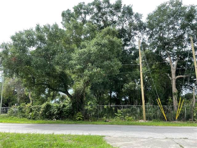 Birch Avenue, Orange City, FL 32763 (MLS #V4919925) :: Globalwide Realty