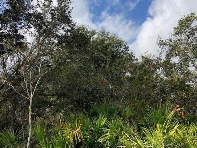 377 Fisher Drive, Deltona, FL 32725 (MLS #V4919936) :: Vacasa Real Estate