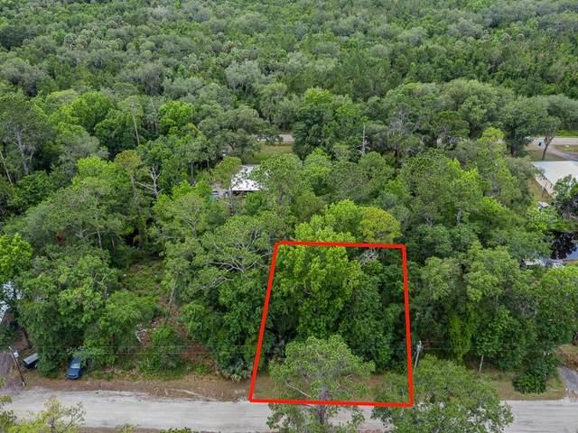 1623 Caroline Drive, Pierson, FL 32180 (MLS #V4920117) :: Rabell Realty Group