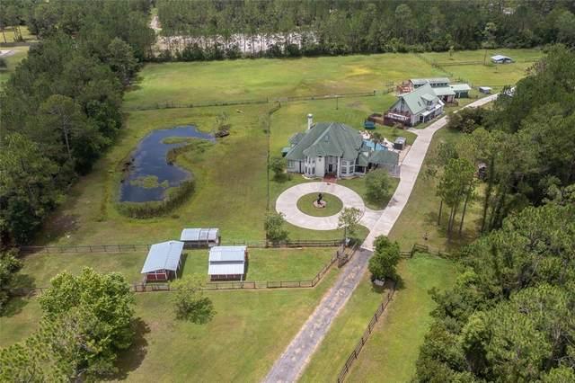 3550 Rodeo Acres Drive, Ormond Beach, FL 32174 (MLS #V4920136) :: Zarghami Group