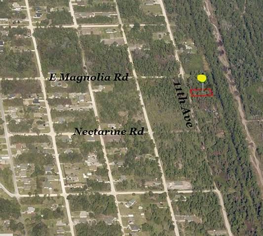 11TH Avenue, Deland, FL 32724 (MLS #V4920157) :: The Price Group