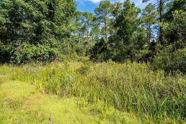 Indian Mound Trail, Deland, FL 32720 (MLS #V4920167) :: The Price Group
