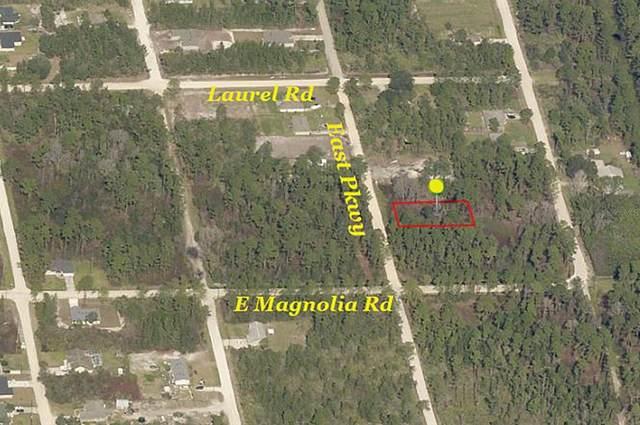 1233 East Parkway, Deland, FL 32724 (MLS #V4920169) :: The Price Group