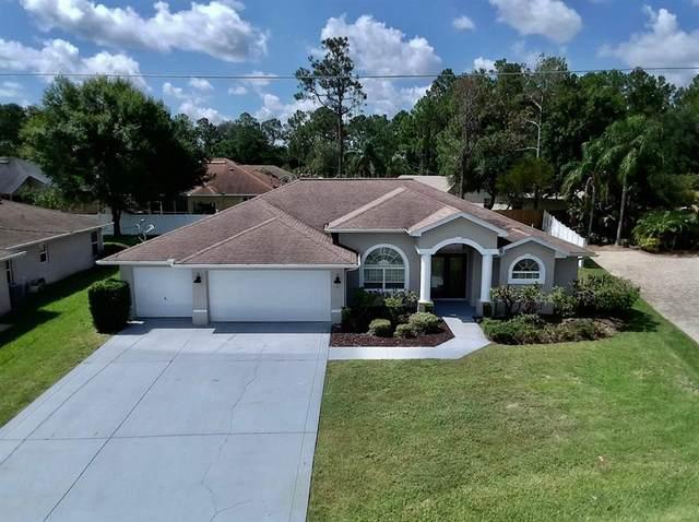 11 Winterberry Place, Palm Coast, FL 32164 (MLS #V4920283) :: Zarghami Group
