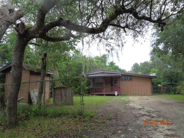 32009 3RD Avenue, Deland, FL 32720 (MLS #V4920290) :: Young Real Estate