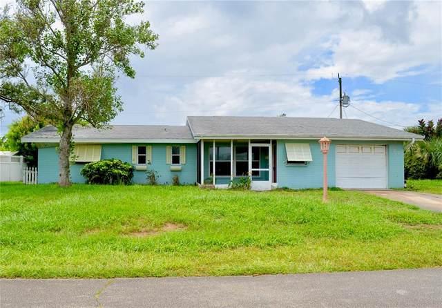 22 Briggs Drive, Ormond Beach, FL 32176 (MLS #V4920329) :: Zarghami Group