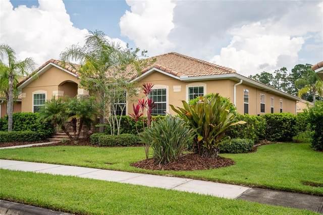 3455 Velona Avenue, New Smyrna Beach, FL 32168 (MLS #V4920352) :: Pristine Properties