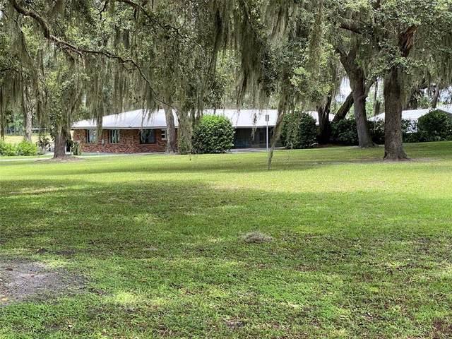579 Johnson Lake Road, De Leon Springs, FL 32130 (MLS #V4920398) :: Florida Life Real Estate Group