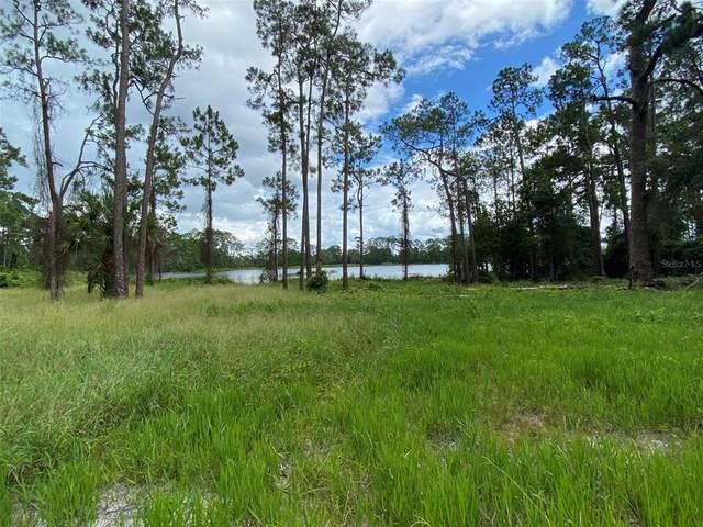 Lake Winona Road, De Leon Springs, FL 32130 (MLS #V4920406) :: Everlane Realty