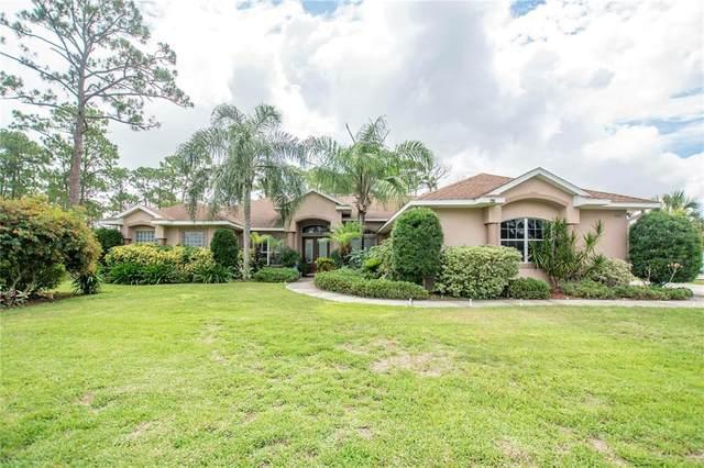 4055 Fawn Lake Boulevard, Mims, FL 32754 (MLS #V4920629) :: Vacasa Real Estate