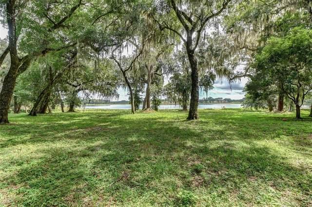 3885 Bird Dog Lane, Deland, FL 32724 (MLS #V4920718) :: Zarghami Group