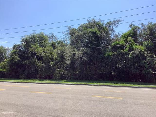 1859 E Normandy Boulevard, Deltona, FL 32725 (MLS #V4920721) :: Cartwright Realty