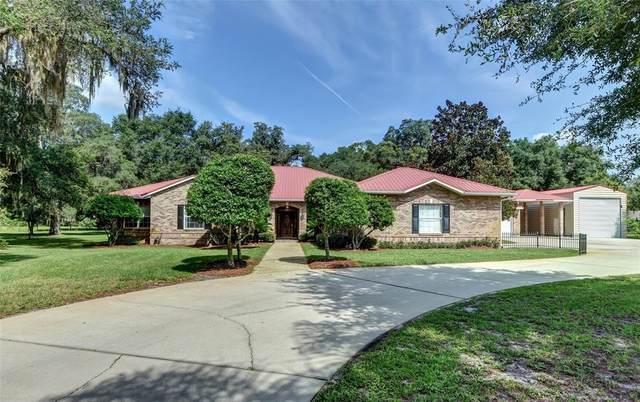 1810 Alvarez Road, De Leon Springs, FL 32130 (MLS #V4920775) :: Vacasa Real Estate