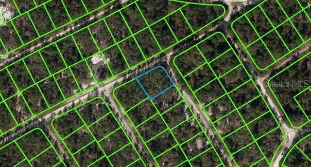 526 Lake Helen Drive, Lake Placid, FL 33852 (MLS #V4920811) :: Team Turner