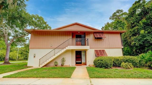 170 Palmetto Woods Court 3B, Deltona, FL 32725 (MLS #V4920830) :: American Premier Realty LLC