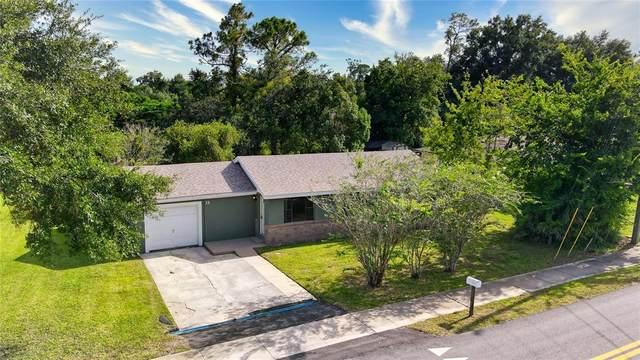 15 Colomba Road, Debary, FL 32713 (MLS #V4920864) :: Premium Properties Real Estate Services