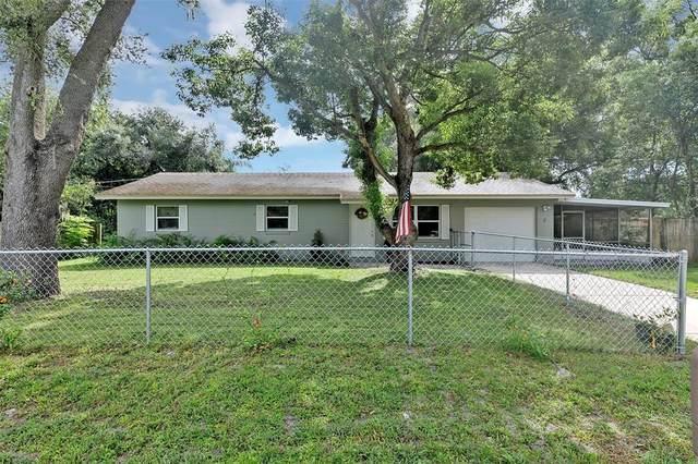 3 Estrella Road, Debary, FL 32713 (MLS #V4920866) :: Team Turner