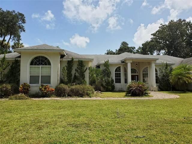 1371 Melonie Trail, New Smyrna Beach, FL 32168 (MLS #V4921088) :: Rabell Realty Group