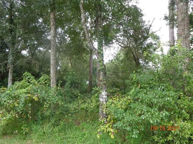 No Name, Deland, FL 32724 (MLS #V4921135) :: Vacasa Real Estate