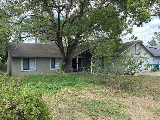 642 Anderson Drive, Deltona, FL 32725 (MLS #V4921161) :: Cartwright Realty