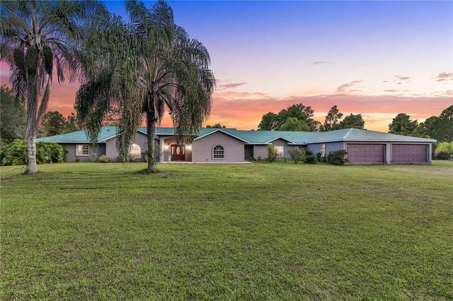 4226 Quail Nest Lane, New Smyrna Beach, FL 32168 (MLS #V4921195) :: Zarghami Group
