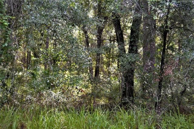 S Blue Lake Avenue, Deland, FL 32724 (MLS #V4921200) :: Vacasa Real Estate