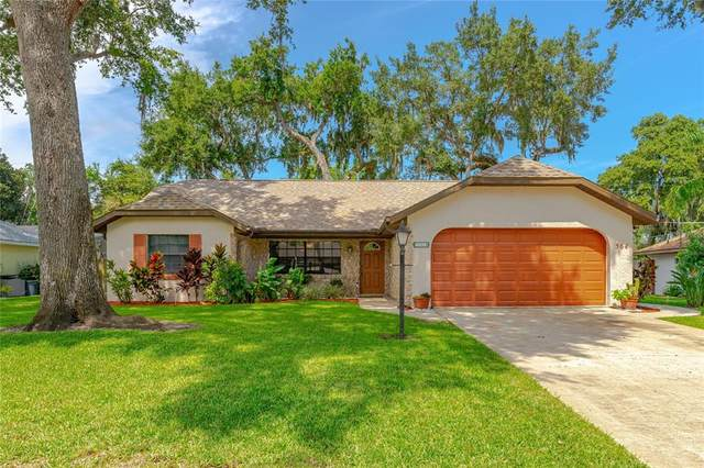 564 Hamlet Drive, Port Orange, FL 32127 (MLS #V4921219) :: American Premier Realty LLC