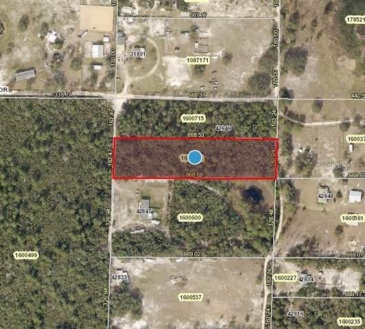 Cooter Pond Road, Deland, FL 32720 (MLS #V4921231) :: Vacasa Real Estate